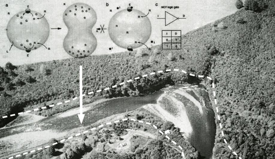 David Benjamin and the future of architecture 03