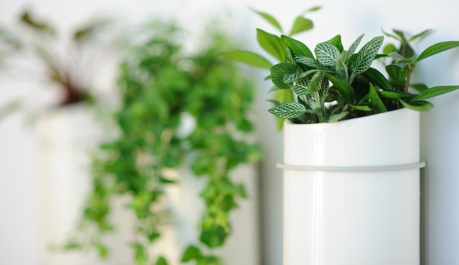 The Bloomer Series – Self-Watering Porcelain Hanging Gardens