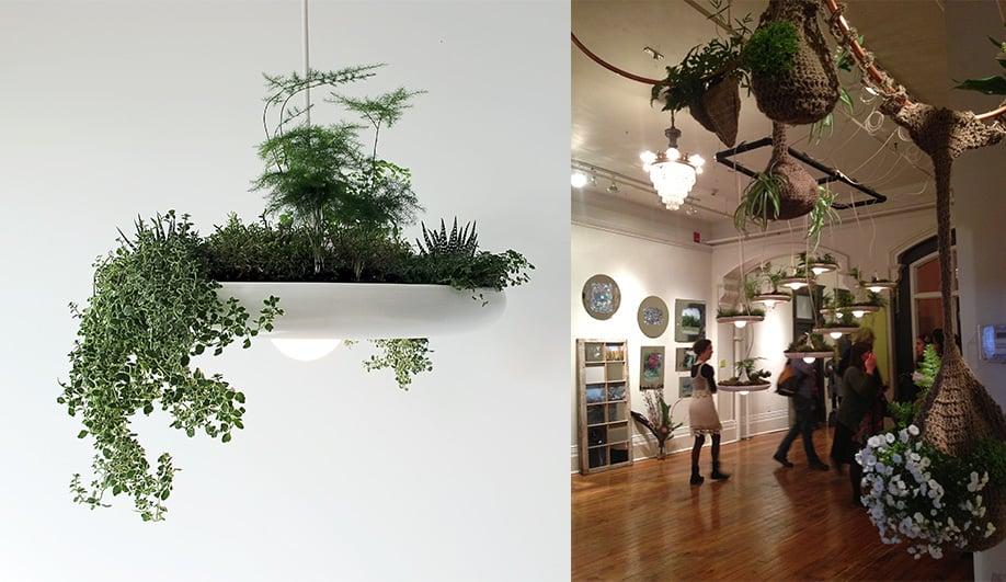 On This Weekend: Grow Op in Toronto