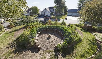 Suburban Lawn to Mini Farm