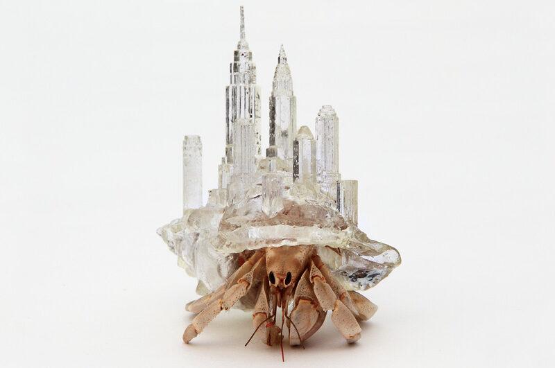 Azure Hermit in the City 01