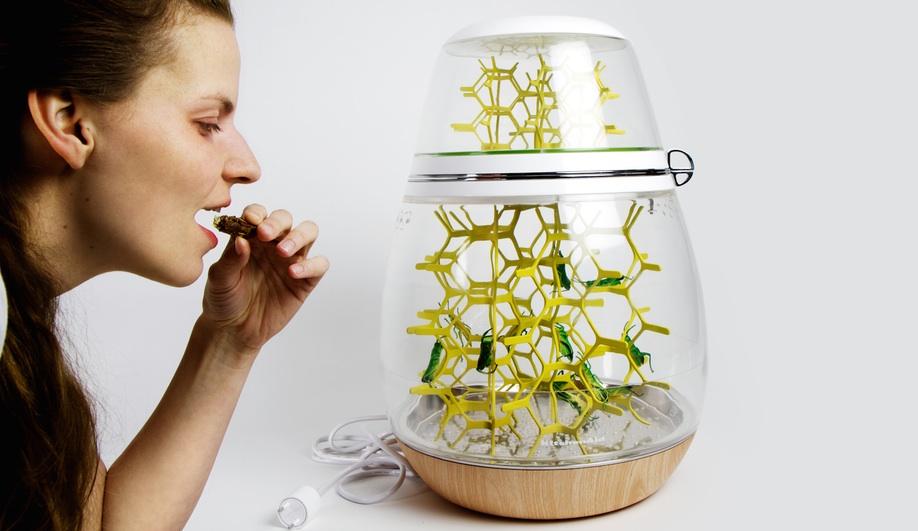 Azure-Istanbul-Design-Biennial--Art-of-Growing-Grasshoppers