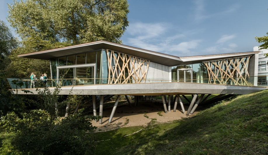 The Treehouse-Inspired Maggie's Centre in Oxford