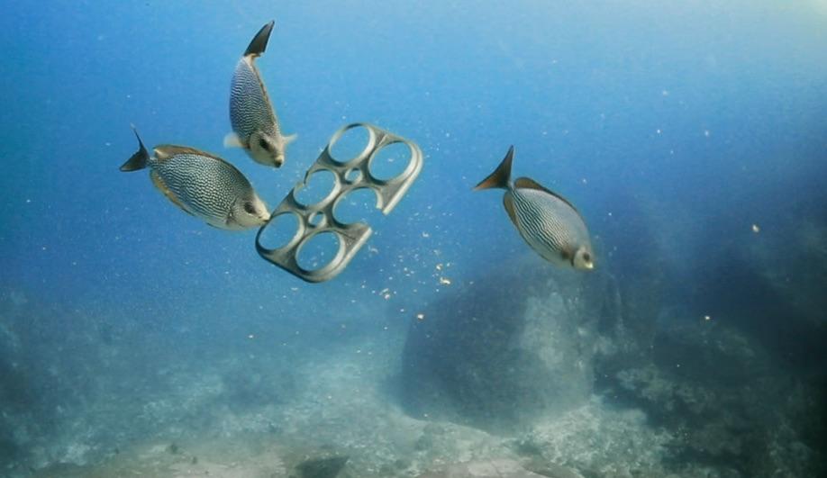 Azure-Designing-Cleaner-Oceans-Saltwater-Brewery-Edible-Six-Pack-Rings-02
