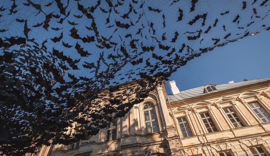 Didzis Jaunzems Conjures Up a Swarm of Bats in Latvia