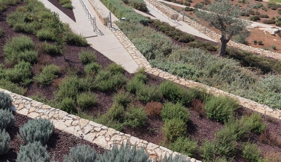 palestinian-museum-1-azure