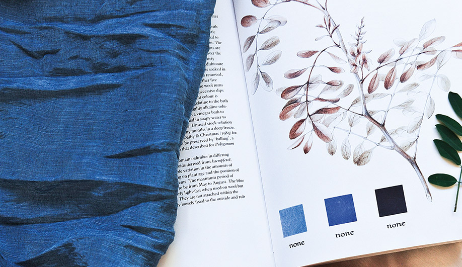 These Colour Creators Are Turning Plants into Beautiful, Earth-Friendly Dyes