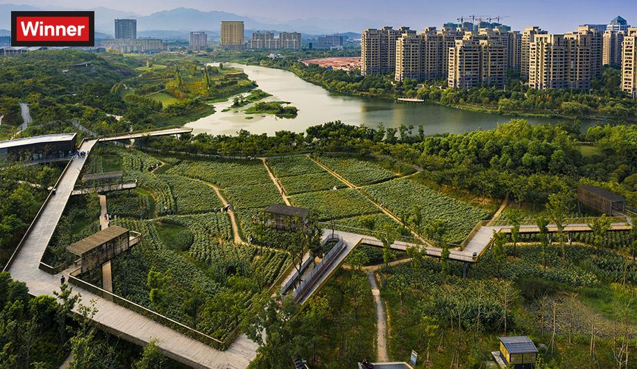2017 AZ Awards Winner: Landscape Architecture