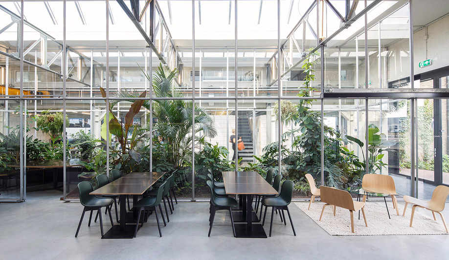 A Foliage Filled Office By Space Encounters
