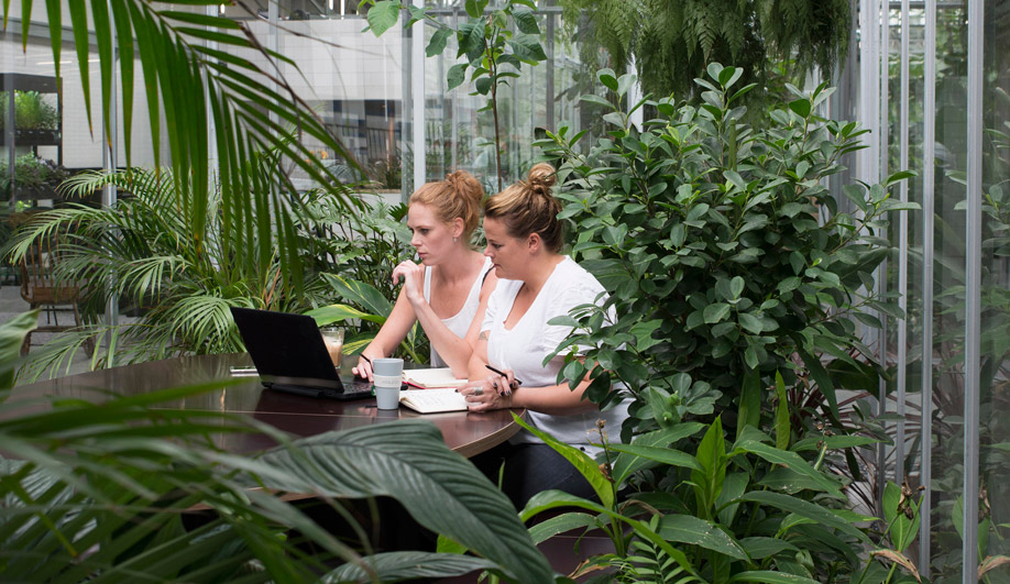 Employees book time to work inside one of three extensive greenhouses.