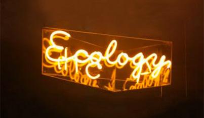 A 5th Ecology