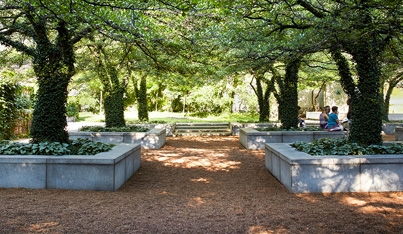 The Landscape Architecture Legacy of Dan Kiley Gallery Talk and Walk