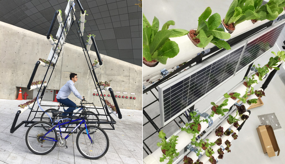 People's Industrial Design Office made this vertical garden on a bicycle.