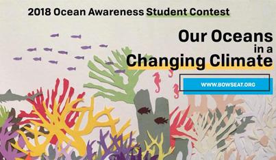 Ocean Awareness Student Contest 2018