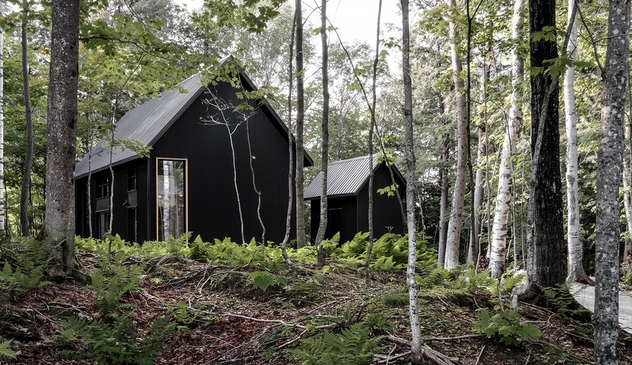 Pitch Black: Peaked Roof Houses with Dark Cladding
