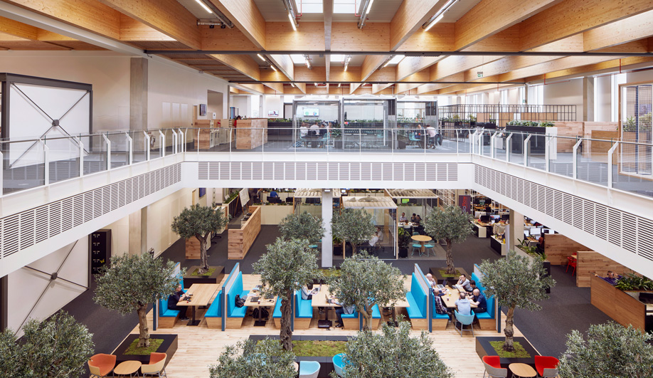 Biophilic Design is Bringing Nature into the Office