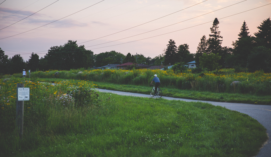 Canadian green space renewals: