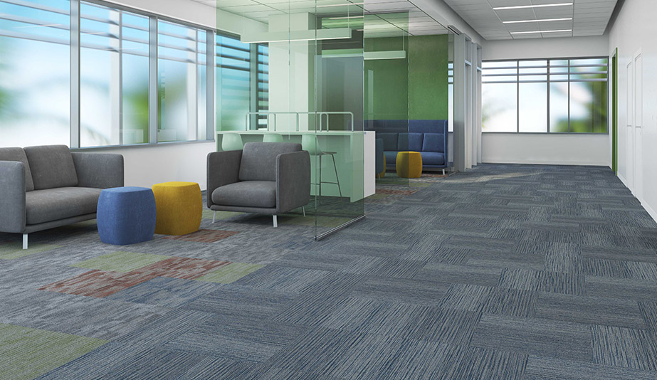 Tangible Hue Carpet by Patcraft