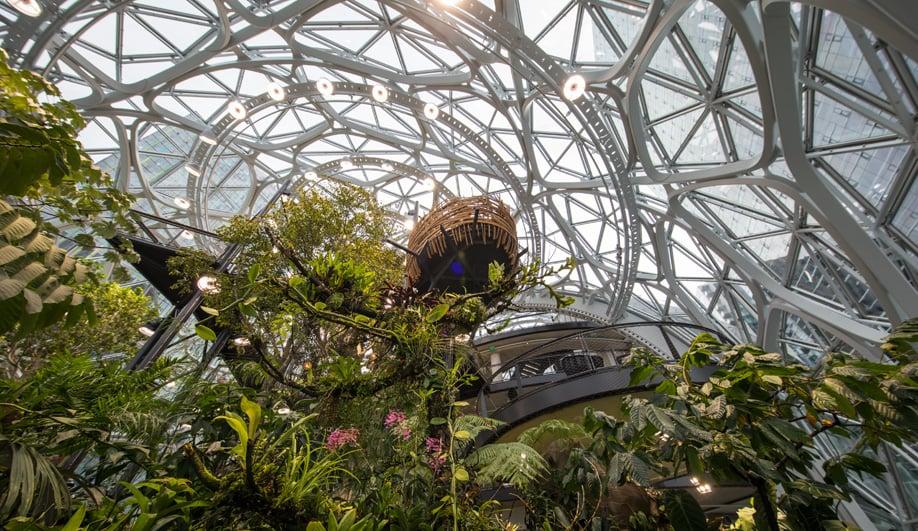 Inside Amazon's Spheres in Seattle