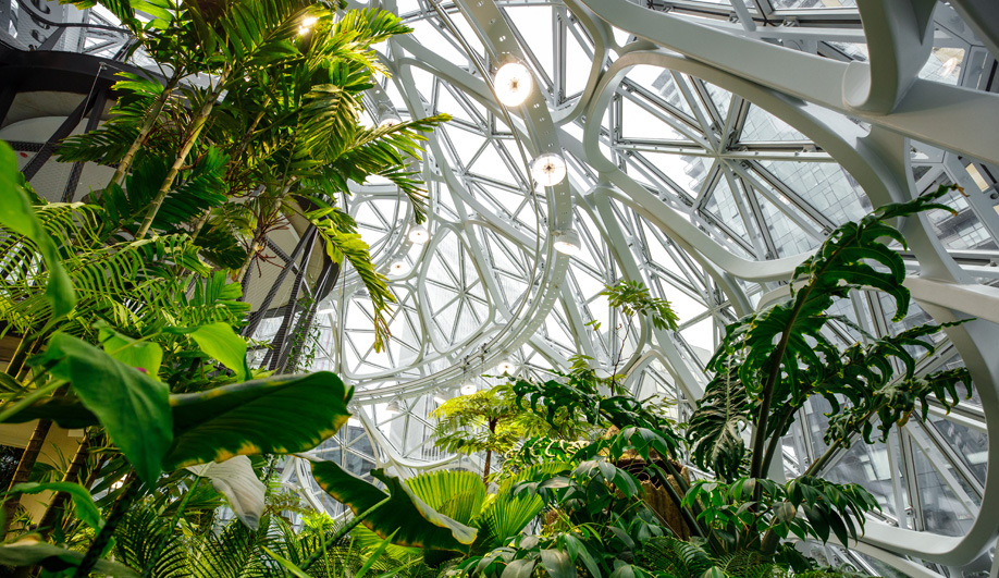 Amazon's Spheres Blend Conservatories with Urban Office Space