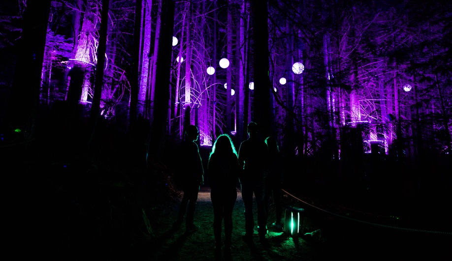 Moment Factory Lights Up Whistler with Vallea Lumina Night Walk