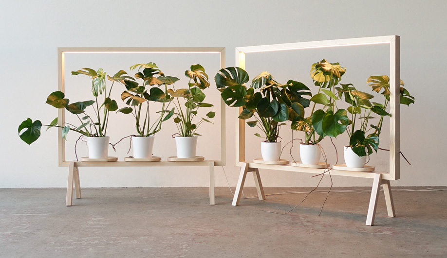 These Indoor Plant Lights Elegantly Sustain Greenery