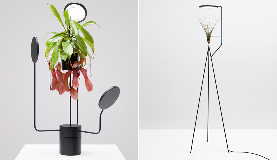 Indoor Plant Lights: Viride