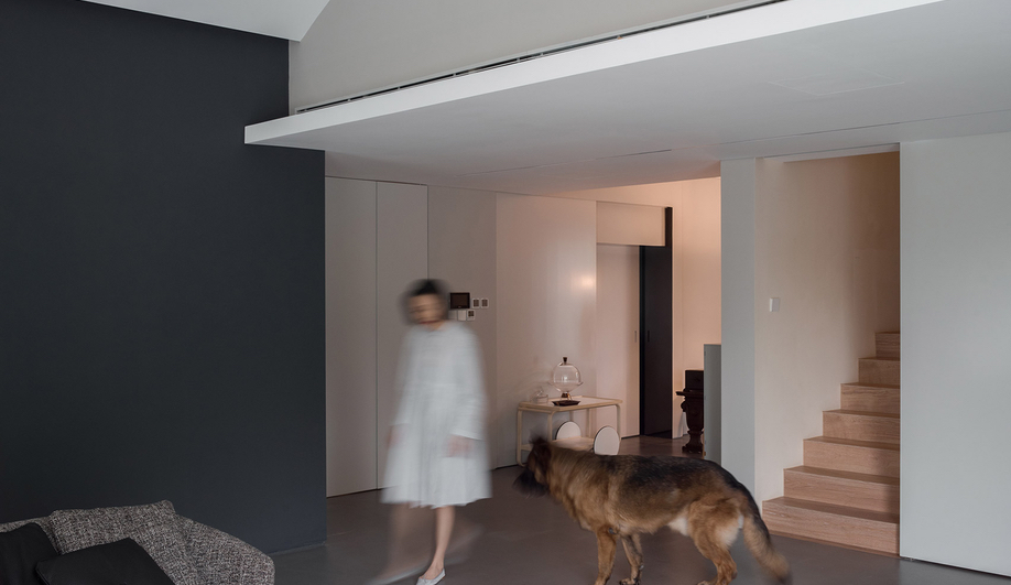 Dog House Design: Atelier About Architecture built a home for humans and dogs.