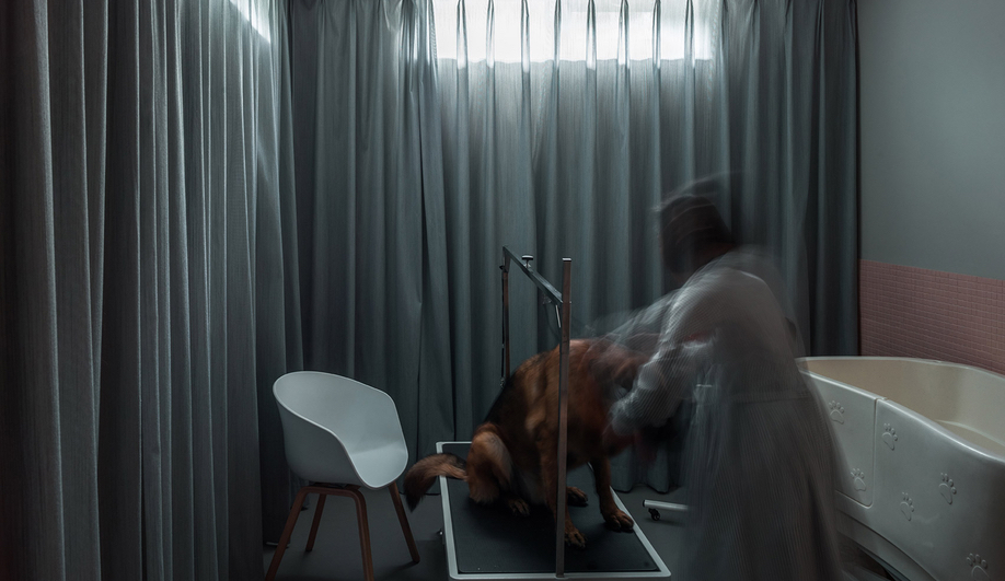 Dog House Design: Atelier About Architecture used Kvadrat acoustic drapes in one bathroom.