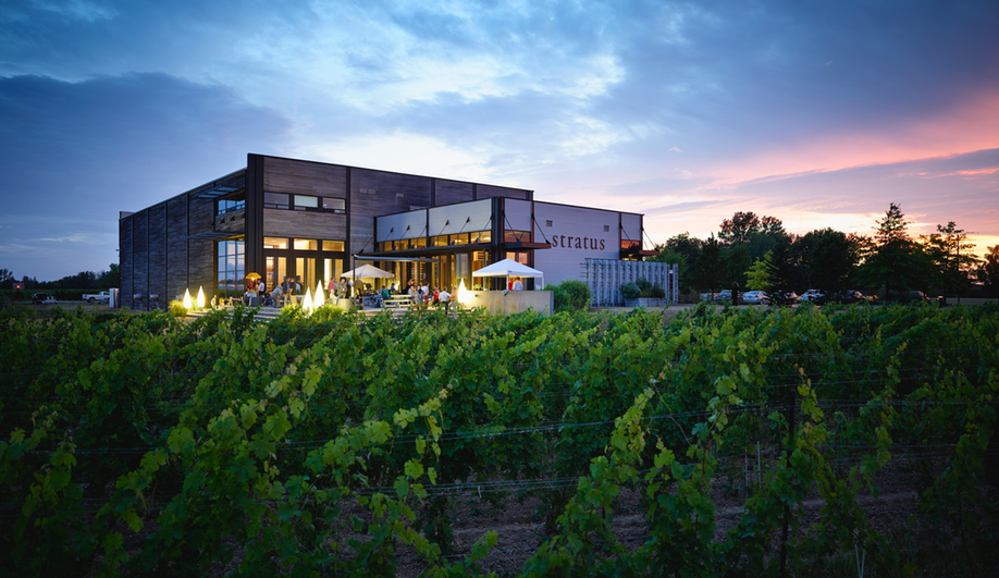 Fine Wines, Fine Design: How Design Thinking Informs Stratus Vineyards