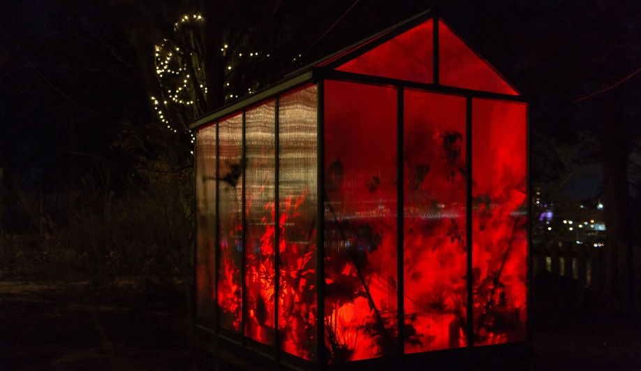 Winter Lights Toronto: Layne Hinton's Greenhouse