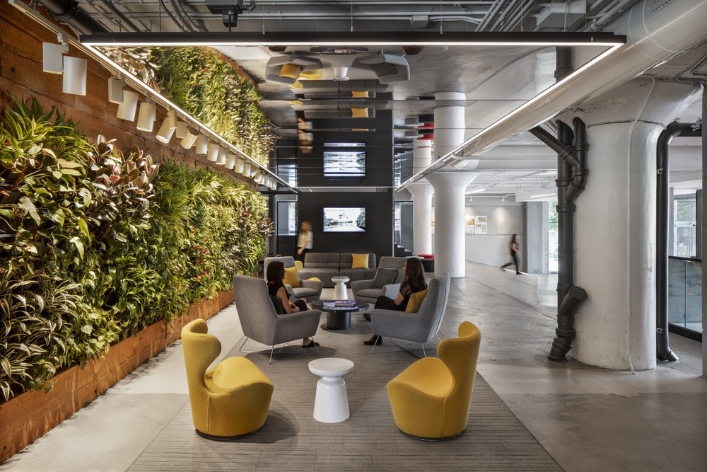 Lemay - Living green wall inside an office space