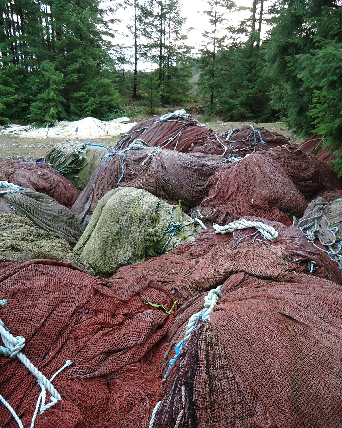 Fishing nets abandoned in a forest.