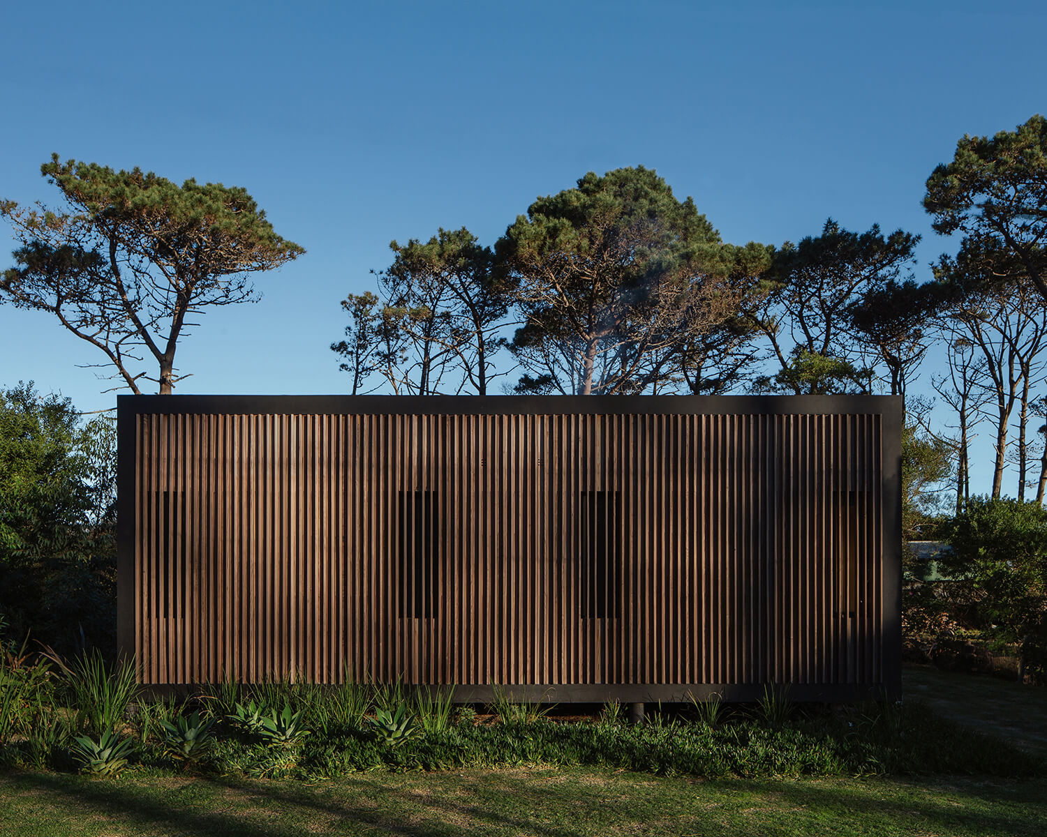Exterior view of the cabin showing the facade covered in wood slats, which acts as a privacy screen