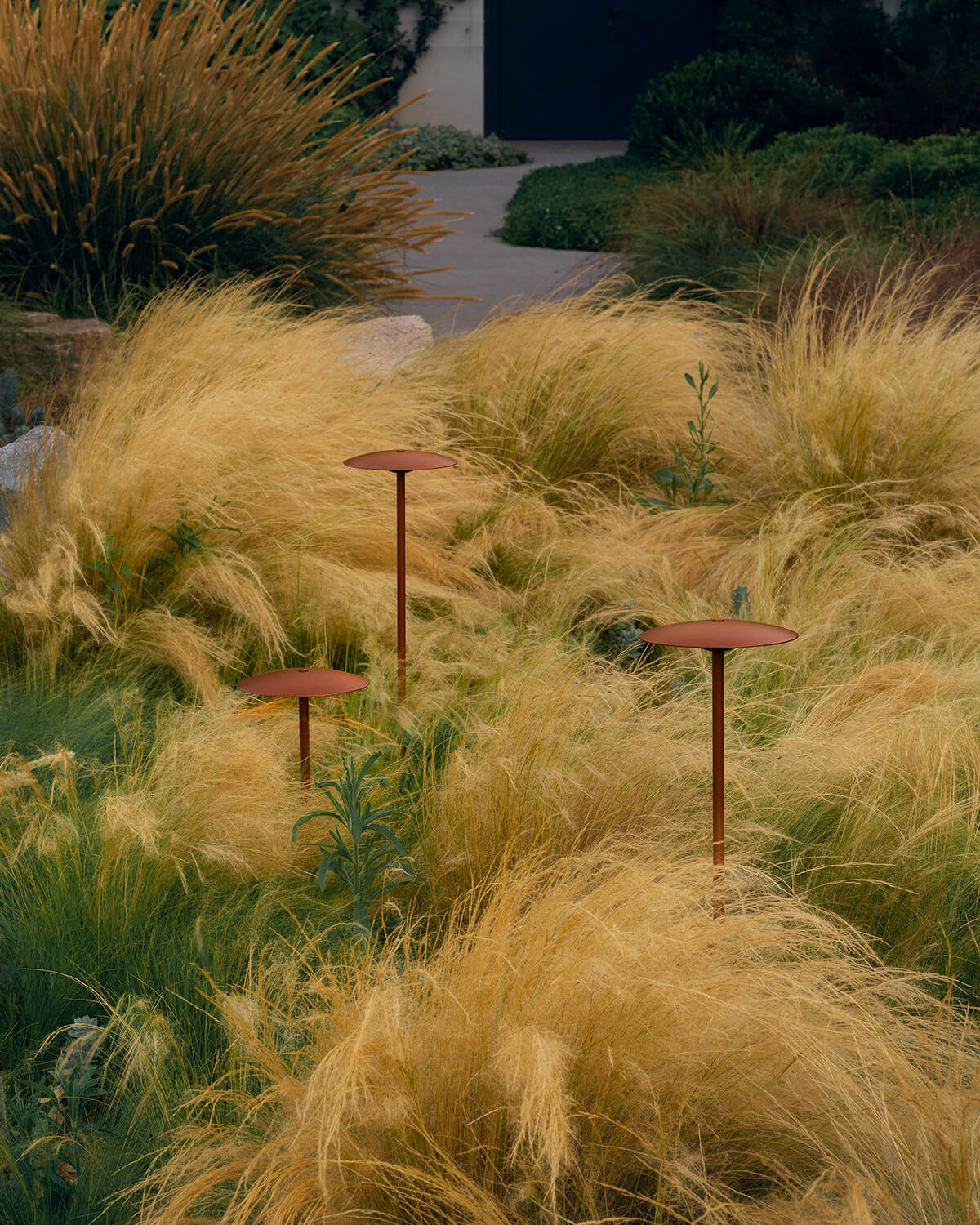 Three Ginger Bollard lamps arranged in a cluster in a patch of tall grass