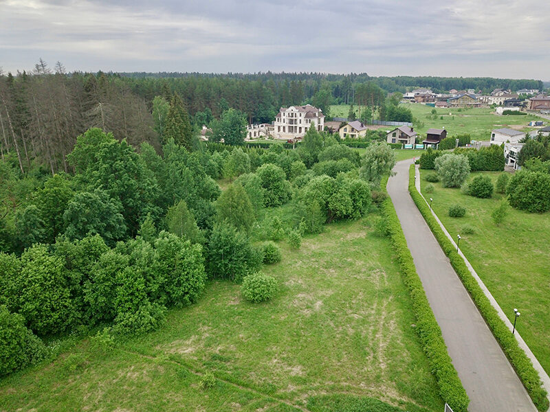 Aerial view of Papushevo Park